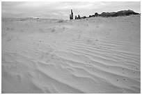 Pink sand and Yei bi Chei. Monument Valley Tribal Park, Navajo Nation, Arizona and Utah, USA (black and white)
