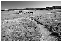 Trail and historic barns,  Florissant Fossil Beds National Monument. Colorado, USA ( black and white)