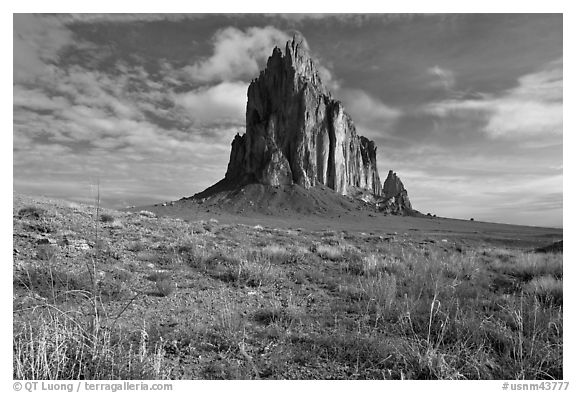 Wildflowers and Shiprock. Shiprock, New Mexico, USA (black and white)
