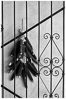 Dried black corn and ironwork. Santa Fe, New Mexico, USA (black and white)