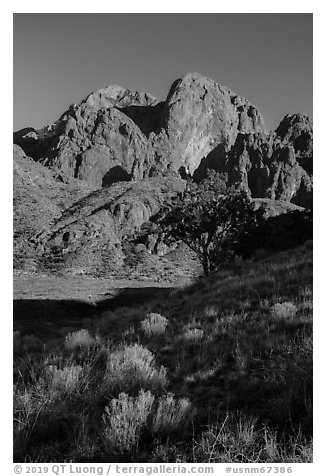 Organ Peak from Dripping Springs Natural Area. Organ Mountains Desert Peaks National Monument, New Mexico, USA (black and white)