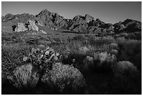 Pictures of Organ Mountains Desert Peaks National Monument