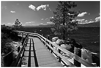 Boardwalk by lake, Sand Harbor, East Shore, Lake Tahoe, Nevada. USA (black and white)