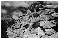 Rocks, Whitney Pocket. Gold Butte National Monument, Nevada, USA ( black and white)