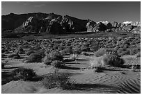Sand dunes. Gold Butte National Monument, Nevada, USA ( black and white)