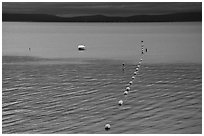 Buoy line, South Lake Tahoe, California. USA (black and white)