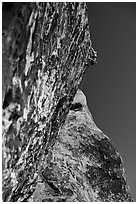 Rock climbers. Red Rock Canyon, Nevada, USA (black and white)
