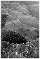 Chessmen Ridge and Canyon. Cedar Breaks National Monument, Utah, USA ( black and white)