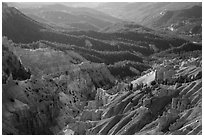 Eroded ridges and forest. Cedar Breaks National Monument, Utah, USA ( black and white)