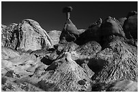Badlands and caprock sandstone spires. Grand Staircase Escalante National Monument, Utah, USA ( black and white)