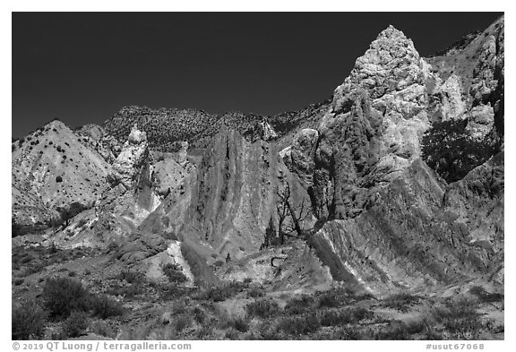 Candyland Hill. Grand Staircase Escalante National Monument, Utah, USA (black and white)