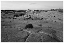 Yellow Rock cross-bedding and Castle Rock. Grand Staircase Escalante National Monument, Utah, USA ( black and white)