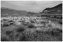 Old Pahrea cemetery. Grand Staircase Escalante National Monument, Utah, USA ( black and white)