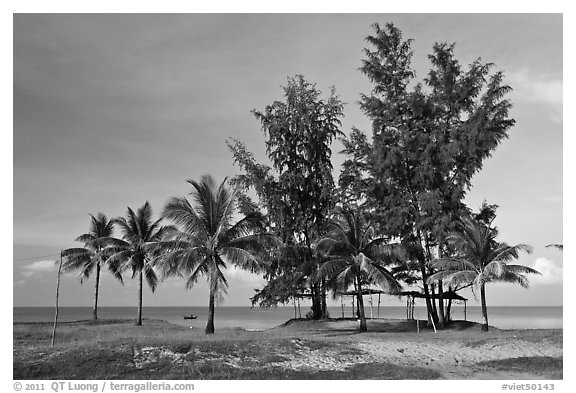 Beachfront with palm trees and huts. Phu Quoc Island, Vietnam