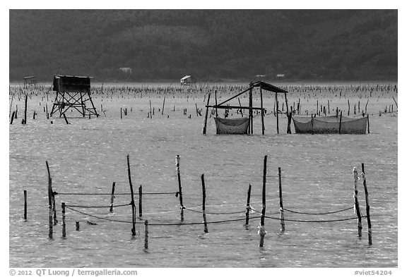 Pilings and fishing nets in lagoon. Vietnam