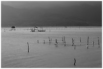 Fish traps in lagoon. Vietnam ( black and white)