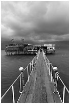 Boarwal, offshore restaurant, and threatening clouds. Vietnam ( black and white)