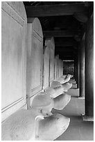 Row of stone turtles with stele backs, Temple of the Litterature. Hanoi, Vietnam (black and white)