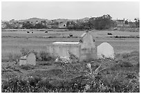Tombs set amongst field. Vietnam (black and white)