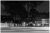Traffic light trails and tall trees next to Van Hoa Park. Ho Chi Minh City, Vietnam ( black and white)