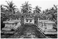 Tombs amidst grove of banana trees. Ben Tre, Vietnam (black and white)