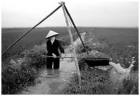 Woman doing irrigation work in a rice field. Vietnam (black and white)
