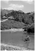 Thai woman riding a water buffalo across a pond near a village, near Tuan Giao. Northwest Vietnam (black and white)