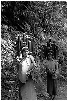 Montagnard women carrying bamboo sections, near Lai Chau. Northwest Vietnam (black and white)