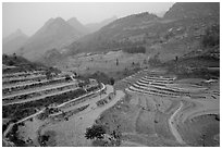 Dry cultivated terraces. Bac Ha, Vietnam (black and white)