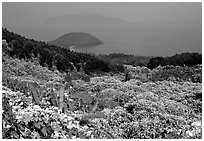 Hai Van (sea of clouds) pass marks the climatic limits of the South, between Da Nang and Hue. Vietnam ( black and white)