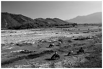 Field close to Lao border, only 50 miles from the coast, Nam Dong. Vietnam ( black and white)