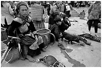 Pigs ready to be carried away for sale, sunday market. Bac Ha, Vietnam (black and white)