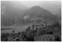 Morning fog on terraced rice fields and village. Sapa, Vietnam (black and white)