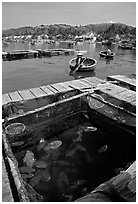 Fish cage in a small village in the Nha Trang bay. Vietnam (black and white)