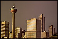 Calgary tower and skyline, late afternoon. Calgary, Alberta, Canada