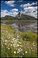 First Vermillon Lake and Mt Rundle, afternoon. Banff National Park, Canadian Rockies, Alberta, Canada (color)