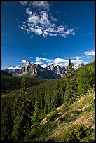 Valley of Ten Peaks, early morning. Banff National Park, Canadian Rockies, Alberta, Canada ( color)