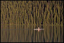 Rower on Lake Louise with forest reflection, early morning. Banff National Park, Canadian Rockies, Alberta, Canada