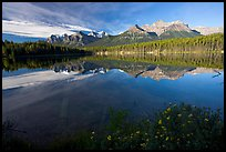 Bow range reflected in Herbert Lake, early morning. Banff National Park, Canadian Rockies, Alberta, Canada ( color)