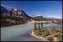 Saskatchevan River. Banff National Park, Canadian Rockies, Alberta, Canada ( color)