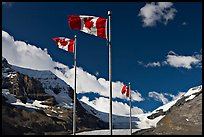 Canadian flags at the Icefieds Center. Jasper National Park, Canadian Rockies, Alberta, Canada (color)