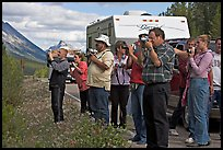 Tourists lined up on Icefields Parkway to photograph wildlife. Jasper National Park, Canadian Rockies, Alberta, Canada (color)