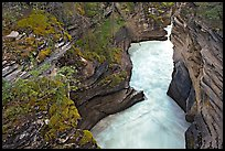 Canyon at the base of Athabasca Falls. Jasper National Park, Canadian Rockies, Alberta, Canada (color)