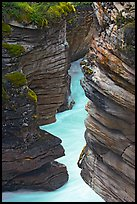 Narrow canyon at the base of Athabasca Falls. Jasper National Park, Canadian Rockies, Alberta, Canada (color)