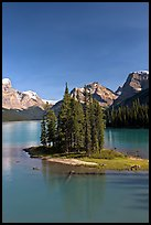 Evergreens on Spirit Island, Maligne Lake, afternoon. Jasper National Park, Canadian Rockies, Alberta, Canada (color)