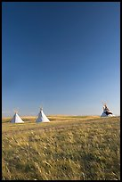 Teepee tents and prairie, late afternoon, Head-Smashed-In Buffalo Jump. Alberta, Canada