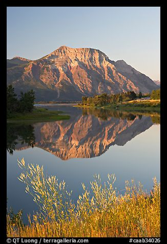 Vimy Peak and reflexion in Middle Waterton Lake, sunrise. Waterton Lakes National Park, Alberta, Canada