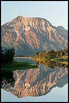 Mountain and reflection in Middle Waterton Lake, sunrise. Waterton Lakes National Park, Alberta, Canada