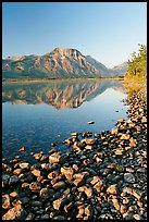 Pebbles, Middle Waterton Lake, and Vimy Peak, early morning. Waterton Lakes National Park, Alberta, Canada (color)