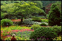 Tourist looking at flowers and trees in the Sunken Garden. Butchart Gardens, Victoria, British Columbia, Canada